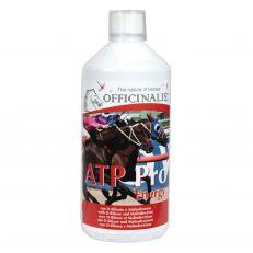 Energizzante Atp Pro