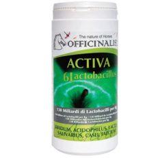 Activa 6 Lactobacillus Officinalis  Kg.1