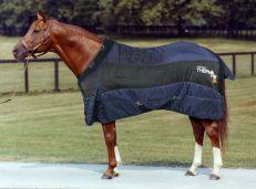 Coperta Box Horses Thermo HOT 300gr