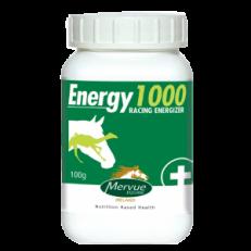 Mervue Energy1000