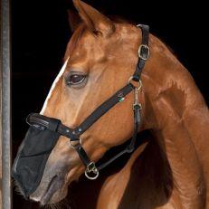 Antimosche Naso Horses Nose Guard