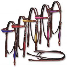 Briglia con Redini Coloured