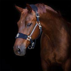 Cavezza Horses Lorena Soft