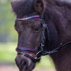 Briglia Pony Star Pinky