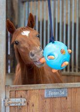 Palla Per Cavalli Carrot Ball