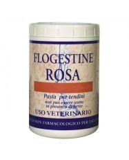 Flogestina Rosa FM Italia
