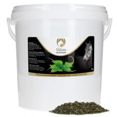 Excellent Herbs Nettel