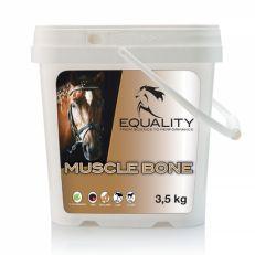 Muscle Bone Equality