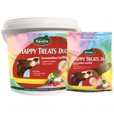 Biscotti Ravene Happy Treats Duo