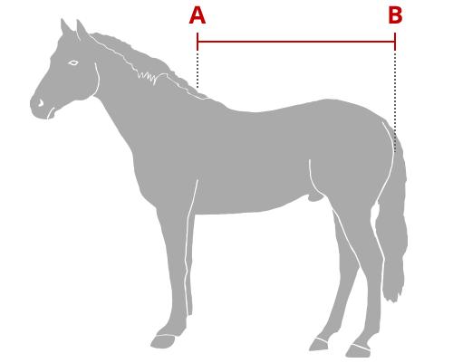 Guida alle taglie coperte per cavalli